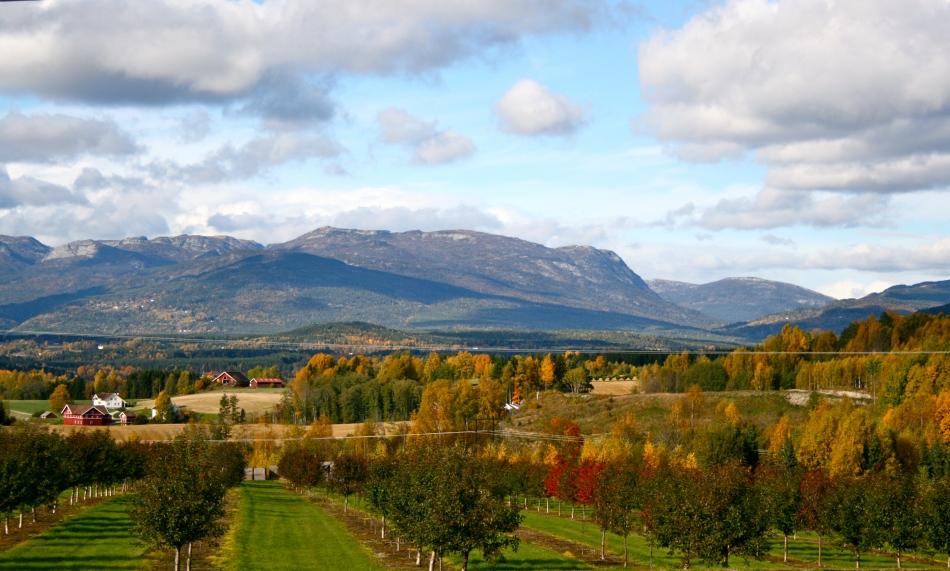 Gvarv, Sauherad kommune, Telemark fylke. Av og til lurer jeg på hvorfor i svarte jeg bor i byen!